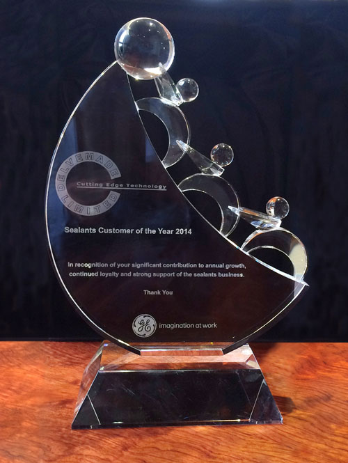 Delvemade was awarded GE Momentive's Customer of the Year award
