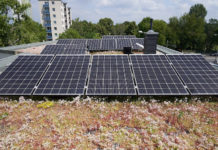 The Optigrün Solar FKD solution is suitable for use as part of an extensive sedum or wildflower planted specification