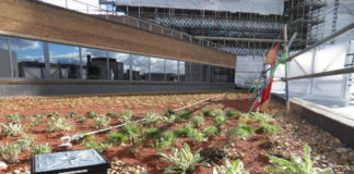 An extensive green roof finish for promoting a new ecosystem